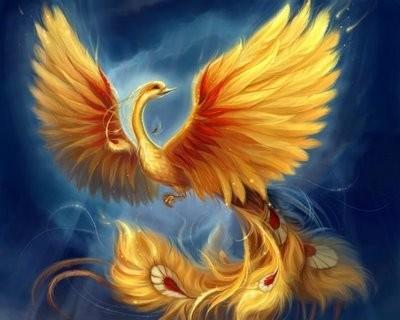 L'ÉPÎTRE DES OISEAUX El Ghazali Les différentes espèces d'oiseaux se réunirent de part leur diversité, leurs caractères s étant manifestés : ils déclarèrent qu il était nécessaire qu ils aient un roi