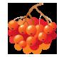 Berries-prop
