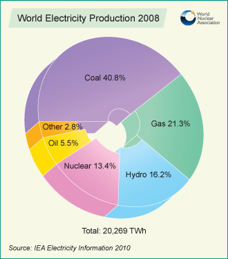 World Electricity Production 2008