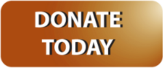 Donate Button - A PNG button