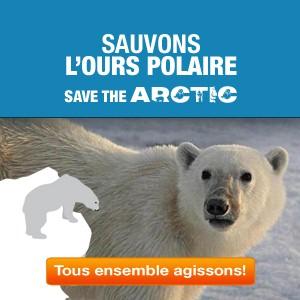 Greenpeace lance la campagne Save the Arctic