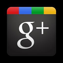 NetPublic sur Google+ (site externe)