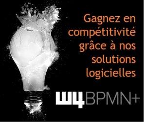 W4 - BPMN+