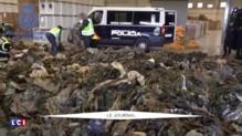 Espagne : 20.000 uniformes militaires destinés aux djihadistes saisis