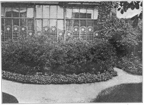 A VIEW OF THE VERANDA OF THE HOUSE IN THE IMPASSE RONSIN