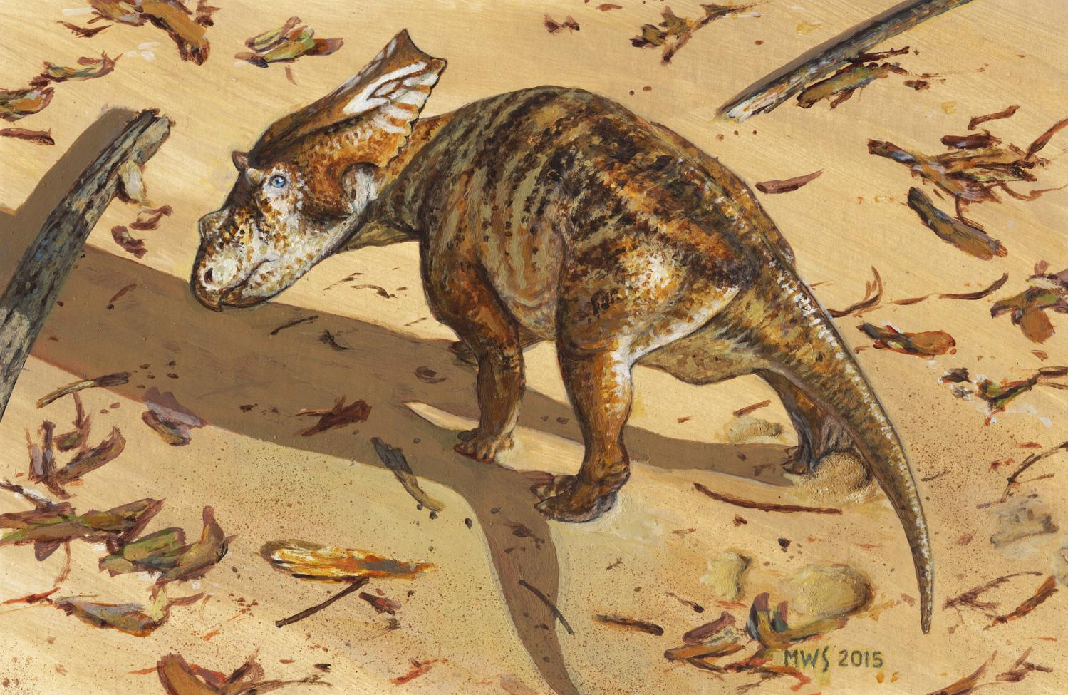 Paleontologists Discover Adorable Horned Dinosaur Baby