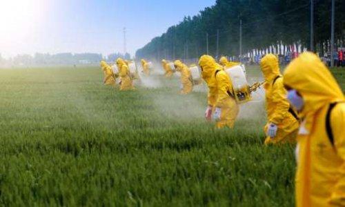 Pétition : Dicamba : l'herbicide de l'apocalypse