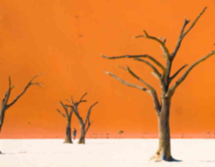 Namib Sand Sea – First prize of heritage photo contest