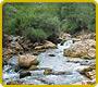 Los ríos de Aragón