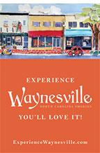 Waynesville 28786