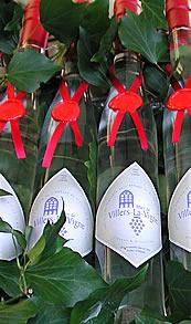 Villers la Vigne. Le vignoble de l'Abbaye de Villers la Ville, en Brabant