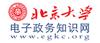 北京大学电子政务