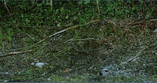 La scène de crime, dans le village de Chevaline (Haute-Savoie), vendredi.