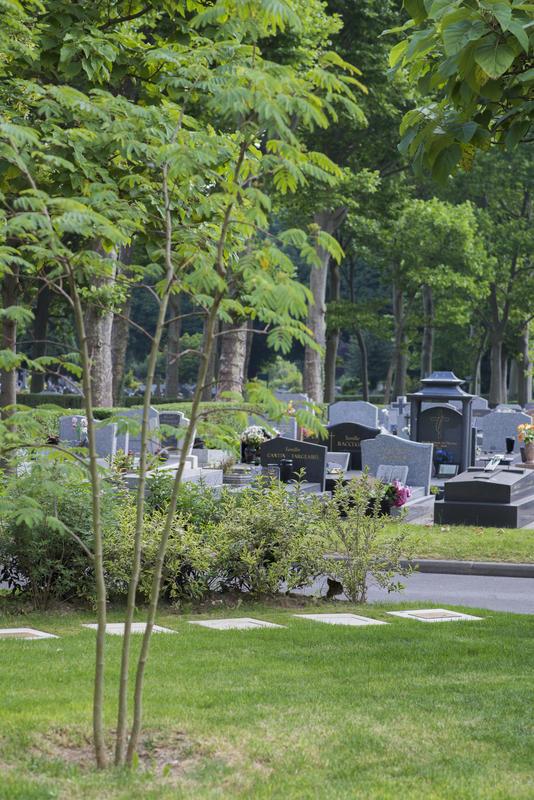 Jardin cinéraire. Cimetière Parisien d'Ivry © Christophe Noël