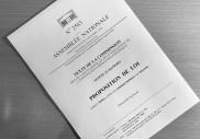 Très contestée, la « loi Avia » contre la cyberhaine devient réalité