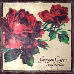 Scarlett Roses