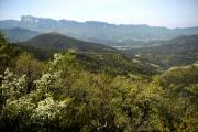La réserve de vie sauvage du Grand Barry dans la Drôme, en 2014, théâtre d'une expérimentation sur la biodiversité.