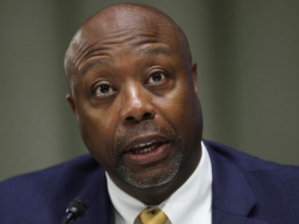 Tim Scott: Liberals Call Me 'the N-Word' and 'Uncle Tom'