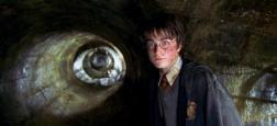 """Audiences Prime: Harry Potter sur TF1 battu par Cassandre sur France 3 - """"Surprises sur prise"""" sous les 2 millions sur France 2 - """"Domino Challenge"""" s'effondre sur M6 devance par... France 5 !"""