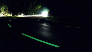 Les lignes de la départementale 29 teintées d'une peinture photoluminescente (France 3 Aquitaine)
