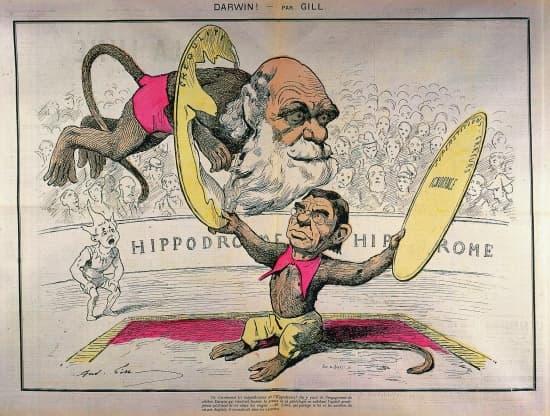 Caricature de Darwin et Littré par Gill.