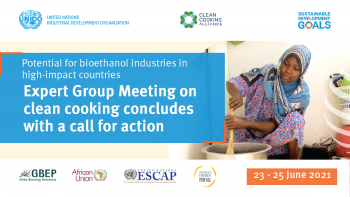 Expert Group Meeting on Clean Cooking: Potential for Bioethanol Industries in High impact Countries (23-25 June 2021) concludes with a call for action