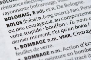 Un dictionnaire français (illustration)
